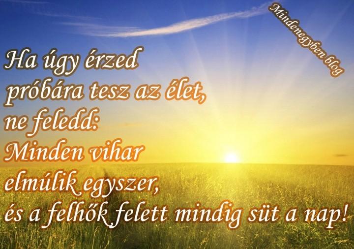süt a nap idézetek MindenegybenBlog
