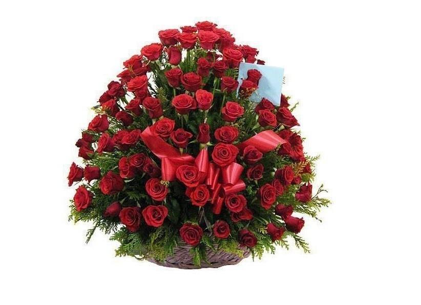 Гиф рождеству, открытки роз для елены