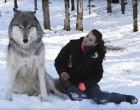 Az óriás farkas leül a nő mellé. De nézd meg mi történik, amikor egymás szemébe néznek!