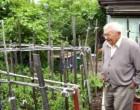 Egy idős olasz bácsika fel akarta ásni a kertjét. Ám ekkor sürgős üzenetet kapott fiától a börtönből: